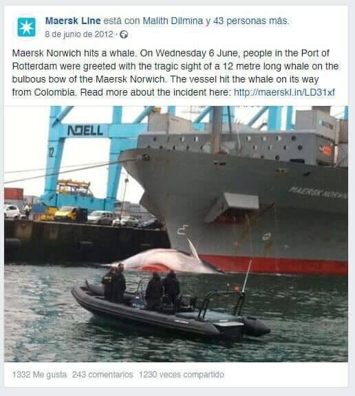 Imágen post Maersk ballena